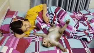 Monkey Baby Nui | Nui's reaction