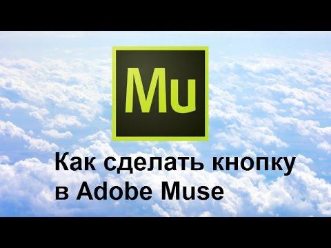 Создание кнопки в Adobe Muse - YouTube