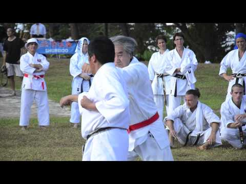 shorin ryu karate
