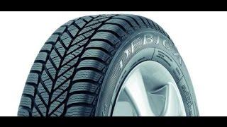 Зимняя шина Debica Frigo 2 купить в Украине интернет магазин Бизнес-Колесо