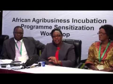 Launch of the first African Business Incubation Conference and Expo