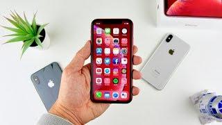 iPhone XR : TEST ! Avis perso, un iPhone équilibré ?