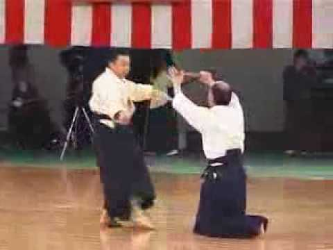 Kempo and Aikijutsu demo Image 1