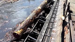Hull Oakes Lumber Co