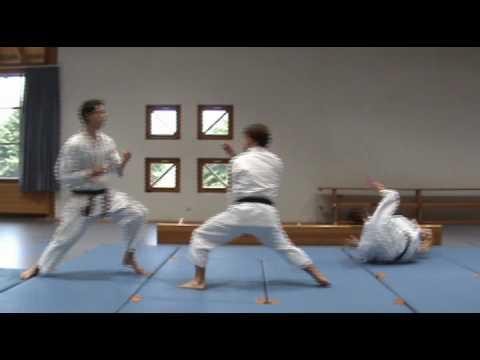 Heian Shodan Bunkai video