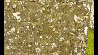 Vídeo 8 de Steeleye Span