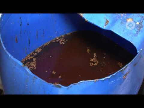 O destino do óleo usado na cozinha