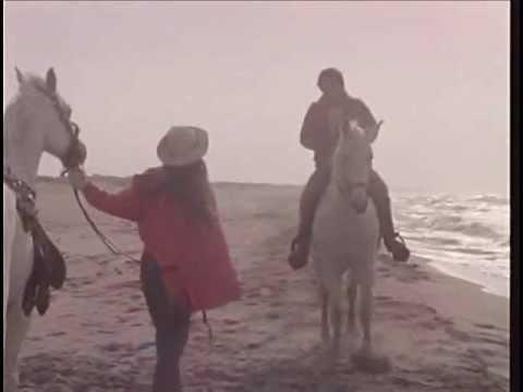 Ci sarà - Al Bano e Romina Power by Film&Clips