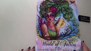 World of Fairies by Sara Burrier coloringbook