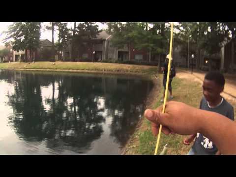Bass Fishing In Houston,Tx (Super Fluke)