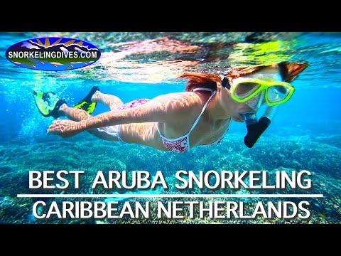 Best Aruba Snorkeling