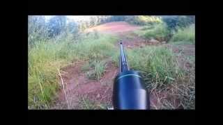 chasse a l'approche du chevreuil 2015 (1)