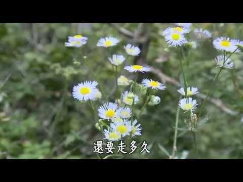 台灣-彩繪人文地圖-20140914 大山的呼喚
