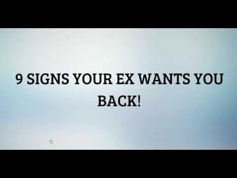 what if your ex wants you back