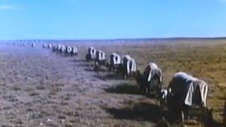 Savage Journey (1983) - Full length western movie