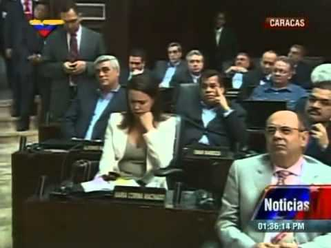 Sesión completa de la Asamblea Nacional este 5 de enero de 2014