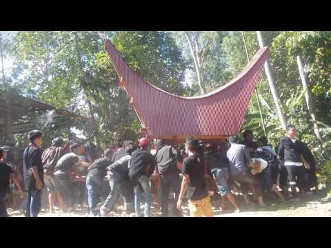 tradisi torajaa mayat dibawa ke pemekaman