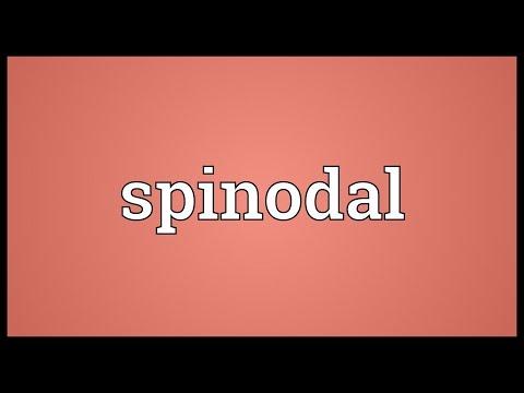 Header of spinodal