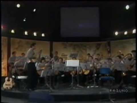 Guitar Symphonietta plays Passacaglia by F. Corbetta. - N. D'Angelo