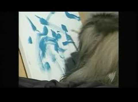 Ziggy the painting pooch SBS World News Australia