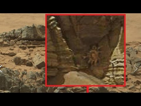 NASA spots 'Alien facehugger' on Mars; UFO photo tweeted by astronaut - aliens and UFOs compilation