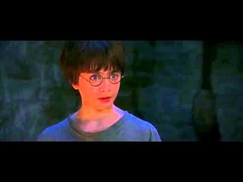 You're A Wizard Harry - Ha Gayyyyyy video