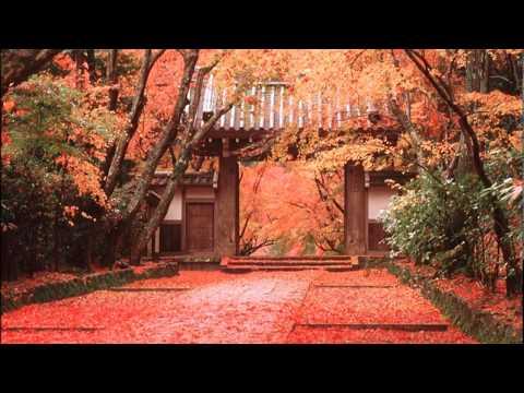 Kohmi Hirose - Promise
