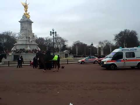 Man tasered outside buckingham palace HD QUALITY NEW!!!!!!!