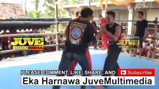 Jawara Pencak Dor PSHT VS PAGAR NUSA Terbaru di Ponorogo