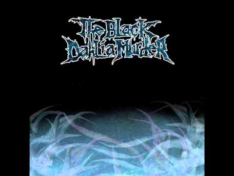 Black Dahlia Murder - Elder Misanthropy