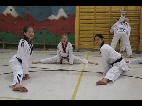 École Taekwondo Laurentides, Qc, Canada (450)971-3177 video
