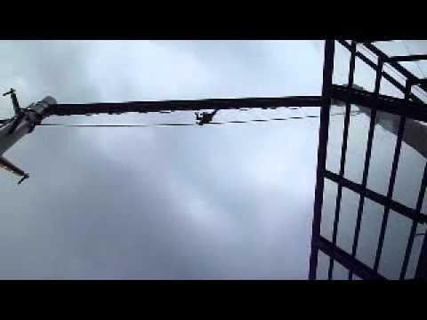旭山動物園・・オランウータンの綱渡り
