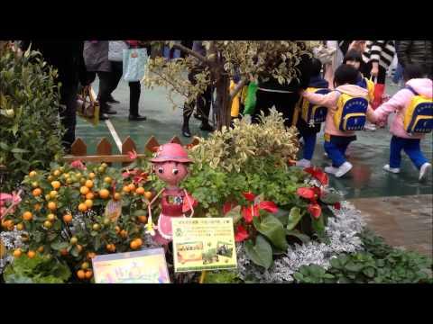 Vegetables at the HK Flower Show (香港花卉展覽) 2014