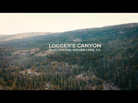 Loggers Canyon | CINEMATIC DRONE FILM | DJI Mavic 2 Pro Aerial Footage
