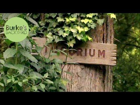 Burke's Backyard, Tugurium