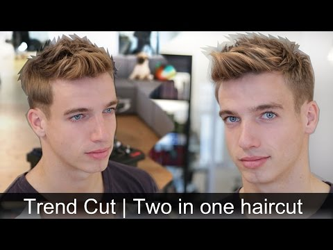 Men trend haircut | Two hairstyles in one haircut | By Vilain Side  kick / Gold Digger