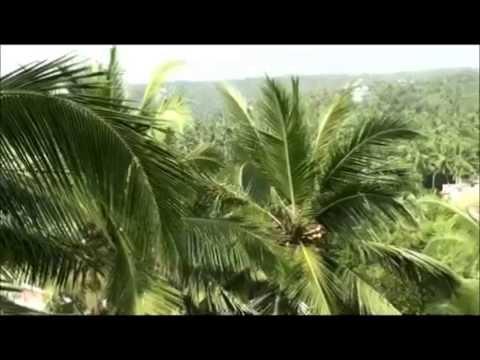 Kovalam, Kerala travel