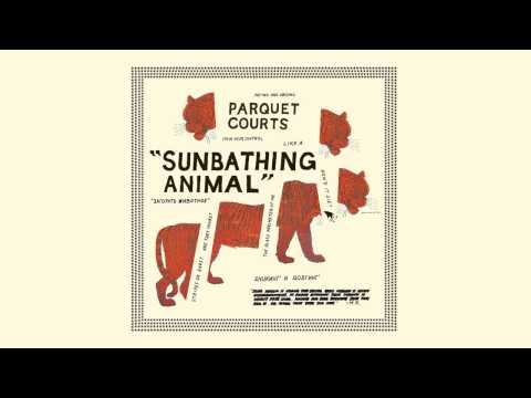 "Parquet Courts ""Sunbathing Animal"""