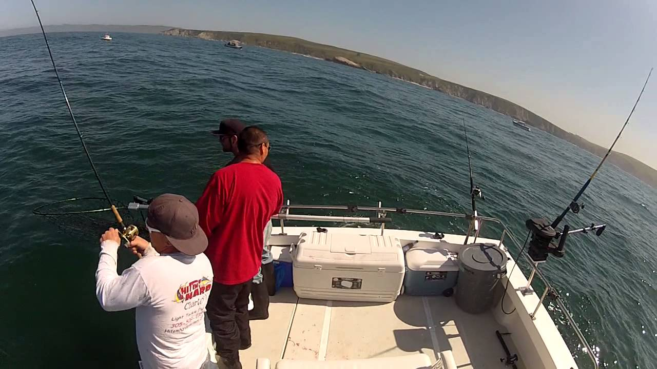 2013 bodega bay ca salmon fishing youtube for California out of state fishing license