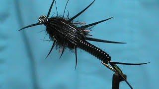 Beginner Fly tying a Deep Black Stonefly with Jim Misiura