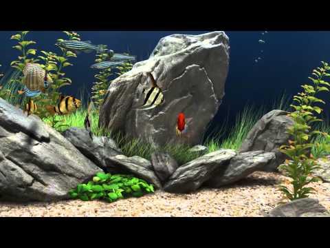 Aquario _3D_para PC_Ahora en HD 1080p.- [SCREENSAVER]