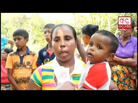 villagers in nallamu|eng