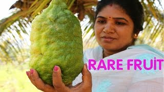 COOKING RARE FRUIT RECIPE | HEALTHY CITRON FRUIT | VILLAGE FOOD