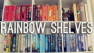 RAINBOW SHELVES | Bookshelf Reorganisation