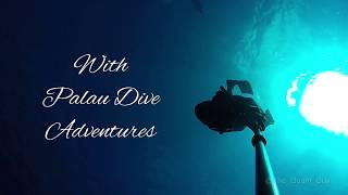 PALAU | Freediving the 7th Underwater Wonder of the World