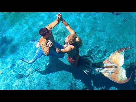 Mermaid Melissa & Merman Antonio swimming with Manatees