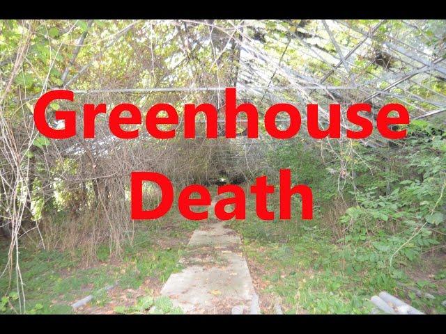 Urban Exploration Greenhouse