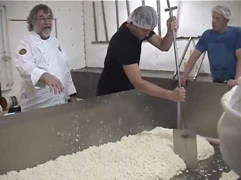 Making cheddar at Grassfields Organic Cheese