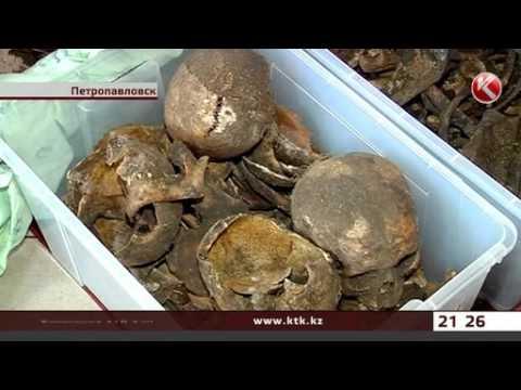 В окрестностях Петропавловска обнаружены части гробов и человеческие останки