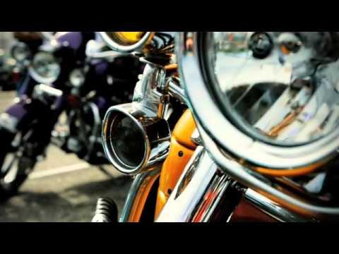 Iron Elite Harley Davidson Iron Elite Harley-davidson